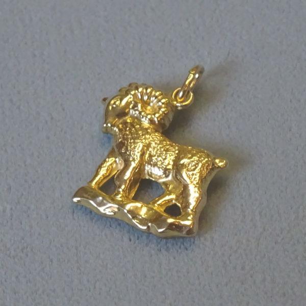 690101  Tierkreiszeichen in 333-Gold, Schmuck gebraucht, Second Hand / Goldschmiede Karl Spörl in Hof/Saale