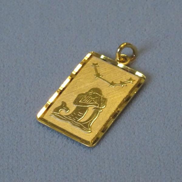 691101 Tierkreiszeichen in 333-Gold, Schmuck gebraucht, Second Hand / Goldschmiede Karl Spörl in Hof/Saale